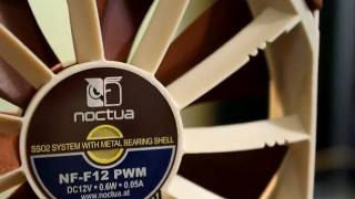 Noctua NF-F12PWM Review - TheTechSource.TV