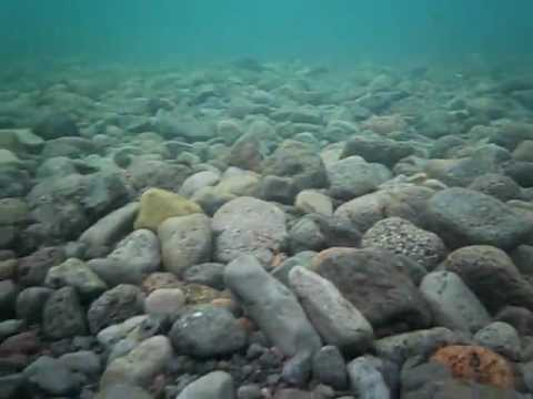 Kodak Easyshare Sport C123 Underwater demostration 3