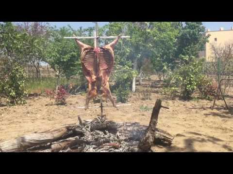 Мясо по Аргентинский. Argentina style lamb BBQ. Patagonian Asador. Баранина на костре целиком.