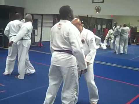 Hapkido Training with Grandmaster Morelan Image 1