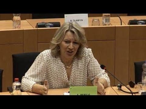 """""""A magyar jogállamiság helyzete"""" – LIBE bizottsági ülés 2018.04.12."""