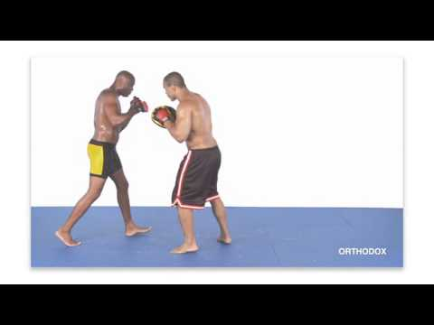Anderson Silva Striking Combos For MMA  (With English Subtitles) CD1 Image 1