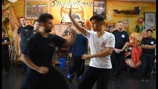 Internal Style Kung Fu - 5 Elements of Combat - Xing Yi Quan 形意拳