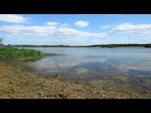 Pitsford Reservoir Nature Reserve Olney Buckinghamshire