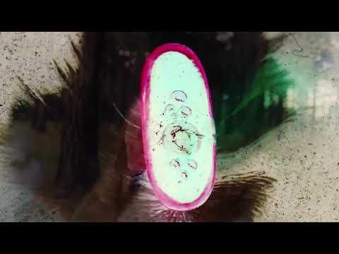 Maggie Rogers - Alaska (Tycho Remix) -INVERT-