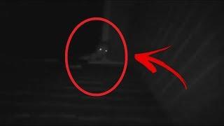 7 Extraterrestres REALES Captados en VIDEO | TOP 7
