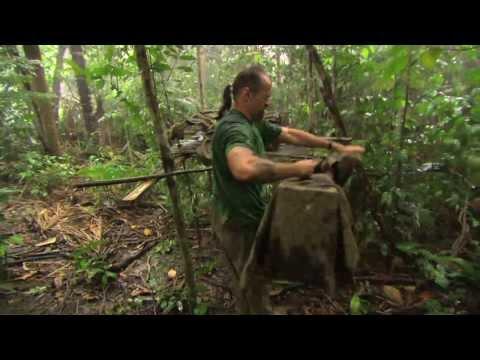 Access 360° World Heritage The Amazon