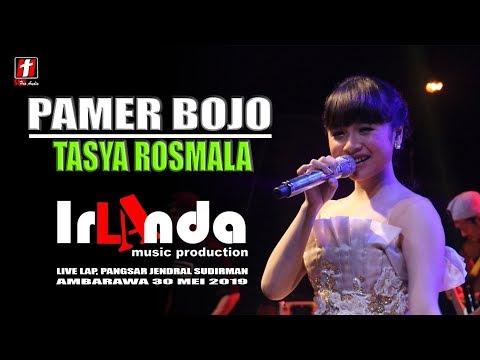 "Download PAMER BOJO TASYA ROSMALA ""OM IRLANDA"" LIVE AMBARAWA 2019 Mp4 baru"