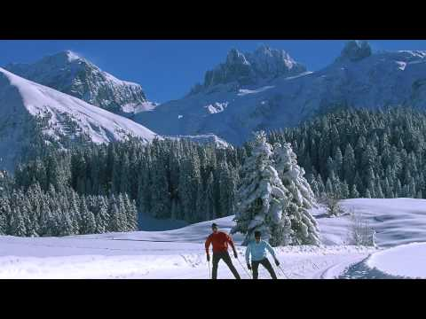 Cross Country Skiing in the Jura