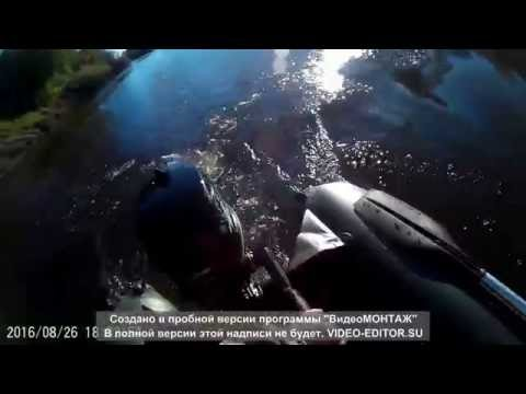 Обкатка лодочного мотора ГЛАДИАТОР 5 NEW - лодка АКВА 3200С