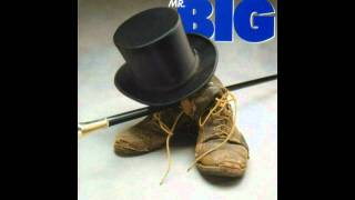 Watch Mr Big How Can You Do What You Do video