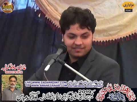 Zakir shawal haider majlis aza 1 jamadi sani 7  february 2019 Kamaliya part