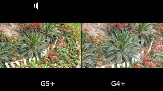 Moto G5+ VS Moto G4+: Full In-Depth Camera Comparison