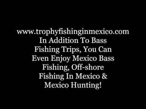 Bass fishing in Mexico, Lake Comedero and peacock bass fishing in Mexico