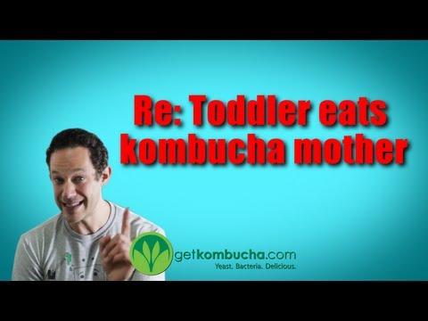 Re: Toddler eats kombucha mother