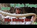 Rắn Khủng Rồi , Bẫy Rắn Võ Minh Phụng 2019 - Miền Tây Sông Nước thumbnail