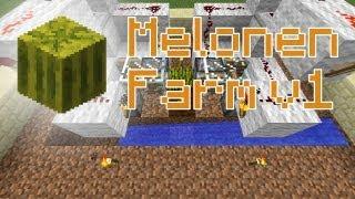 Minecraft-Tutorial: Melonen-Farm - Wie baut man eine Melonen-Farm?