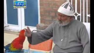 PIR SAHAB PAGARA BHEJ PAGARA HUR Album 07 Mhonjo Morshad Madhiyadhar  Ghul Muhammad Mhar  Sanghar Nizamani