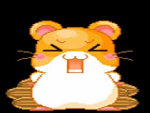 Hampster Song With Hamster Dance-pictores video