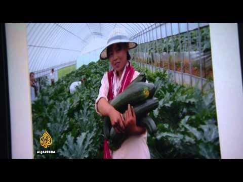 Drought in North Korea raises food shortage fears