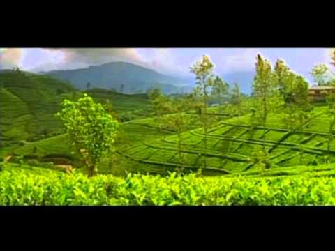Sri Lanka - The Place of a Lifetime