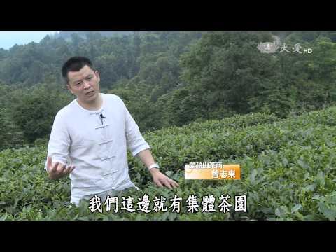 台灣-彩繪人文地圖-20150830 茶的故事(一) - 一碗茶
