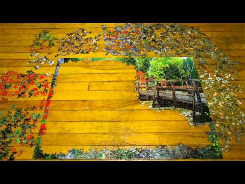 1,000 Puzzle Pieces - Stop Motion [hd] streaming vf