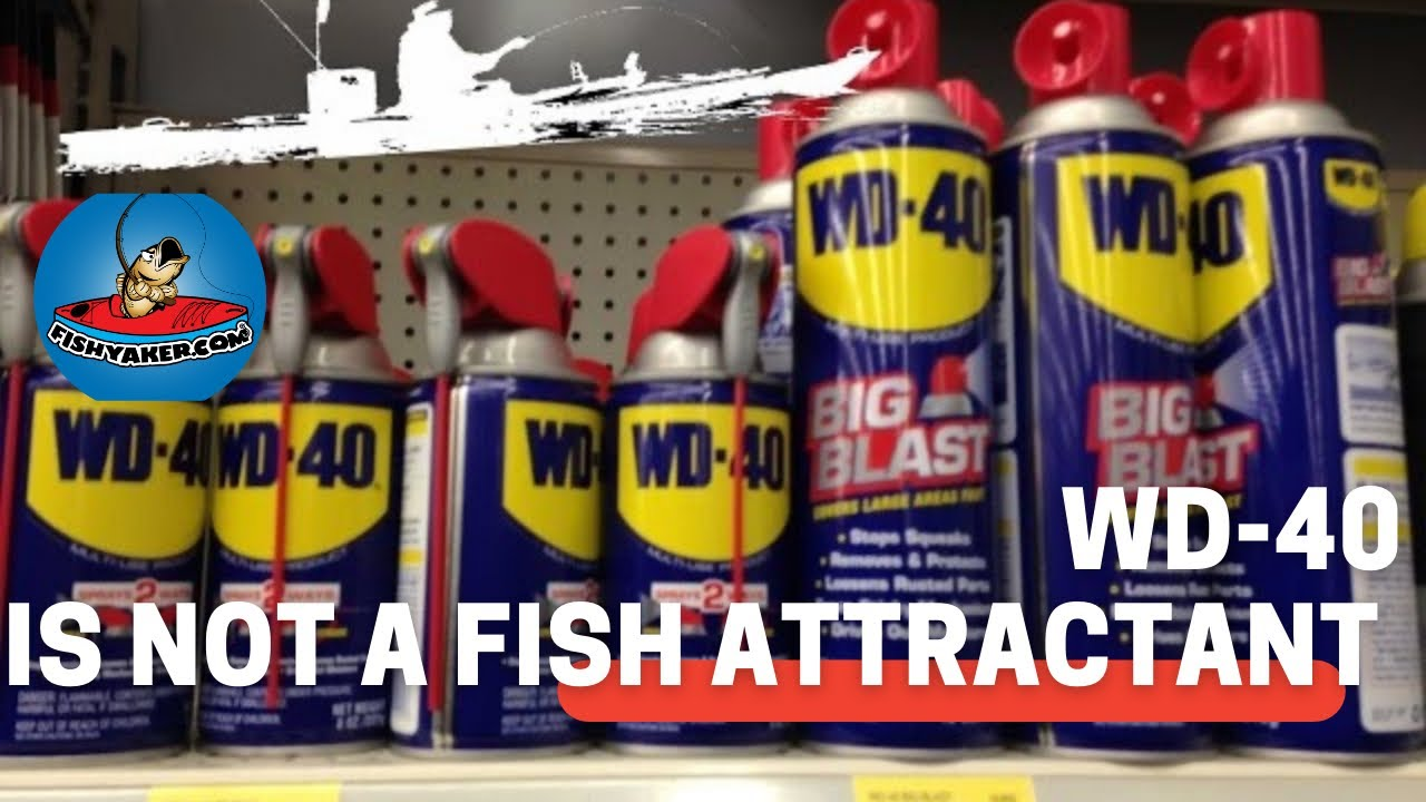 Don t use wd 40 as a fish attractant episode 230 fishing bay for Wd40 fish oil