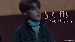 ATEEZ WOOYOUNG || S&M [ FMV ]