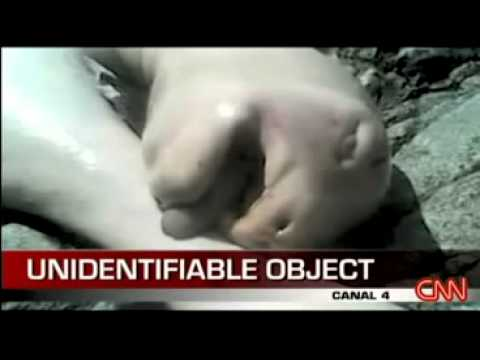 Mystery Creature Found Dead - Alien Lands in Panama - Scares Local Teens