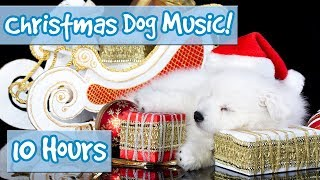The Best Christmas Therapy Music for Dogs! Calming Music for Dogs with Classic Christmas Songs! 🎅🐶  from Relax My Dog - Relaxing Music for Dogs