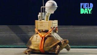 世界最低速のピタゴラ装置。ルーブ・ゴールドバーグマシン♪