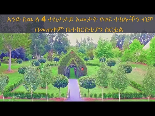 ETHIOPIA - Man spend 4 years building a church using only living trees