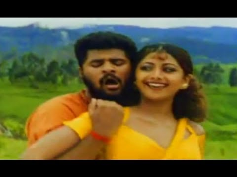 Mil Hi Gaye - Mr Romeo - Prabhu Deva & Shilpa Shetty - Full Song video