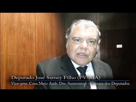Renan decide criar comissão para interceder por Ana Paula