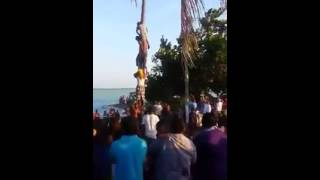 Corozal Town Easter greasy pole competition 2015