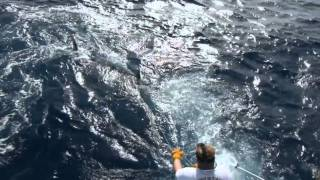 :: Sport Fishing TV :: Marlin Fishing Cape Verde