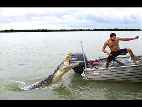 топ рыбак