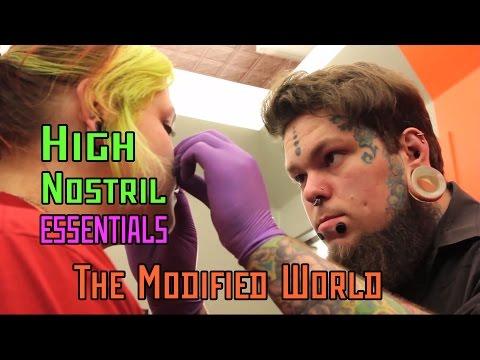 High Nostril ESSENTIALS- THE MODIFIED WORLD