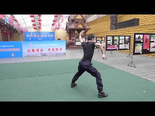 Emei Wushu Festival 2011 - 2
