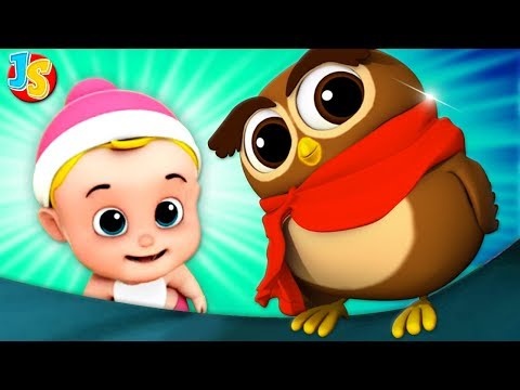 Wise Old Owl | Nursery Rhymes | Songs For Kids | Baby Rhyme By Junior Squad