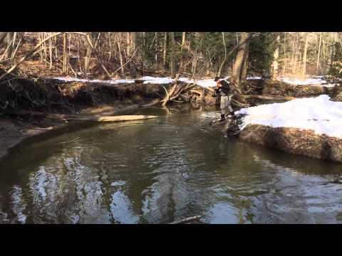Late Spring Steelhead Fishing - Pennsylvania