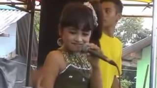 download lagu Cinta Rahasia,tasya Rosmala gratis