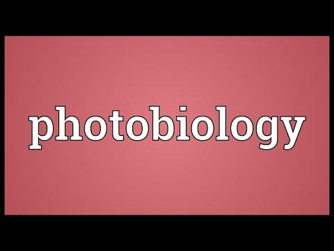 Header of photobiology