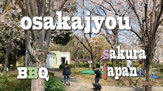 【Osaka Castle】Japan SAKURA