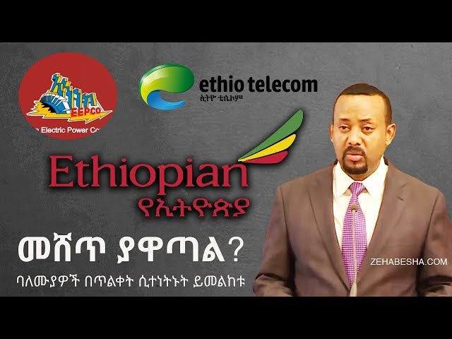 Why Now? - Ethiopian Airlines | Ethio Telecom |  Ethiopian Electric Power Corporation