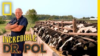 The Incredible Dr. Pol - New Season Trailer | The Incredible Dr. Pol
