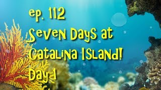 SBS ep. 113 - Seven Days at Catalina Island Day 1