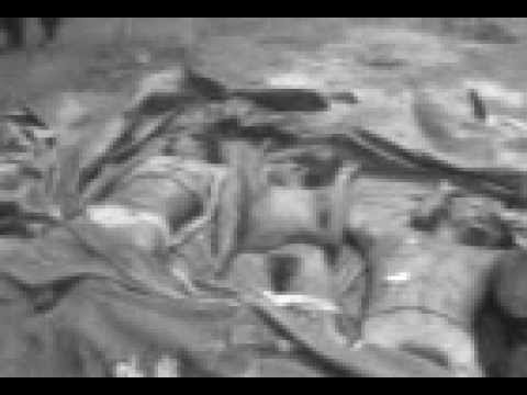 Naked Tamil corpses filmed by Sri Lankan soldiers in last stages of 2009 war