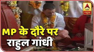 Rahul Gandhi Effers Prayers At Pitambara Peeth In Poll-Bound Madhya Pradesh | ABP News